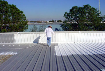 Residential Flat Roof Painting