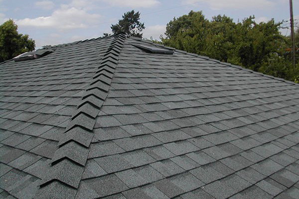 Shingle Roof Painting