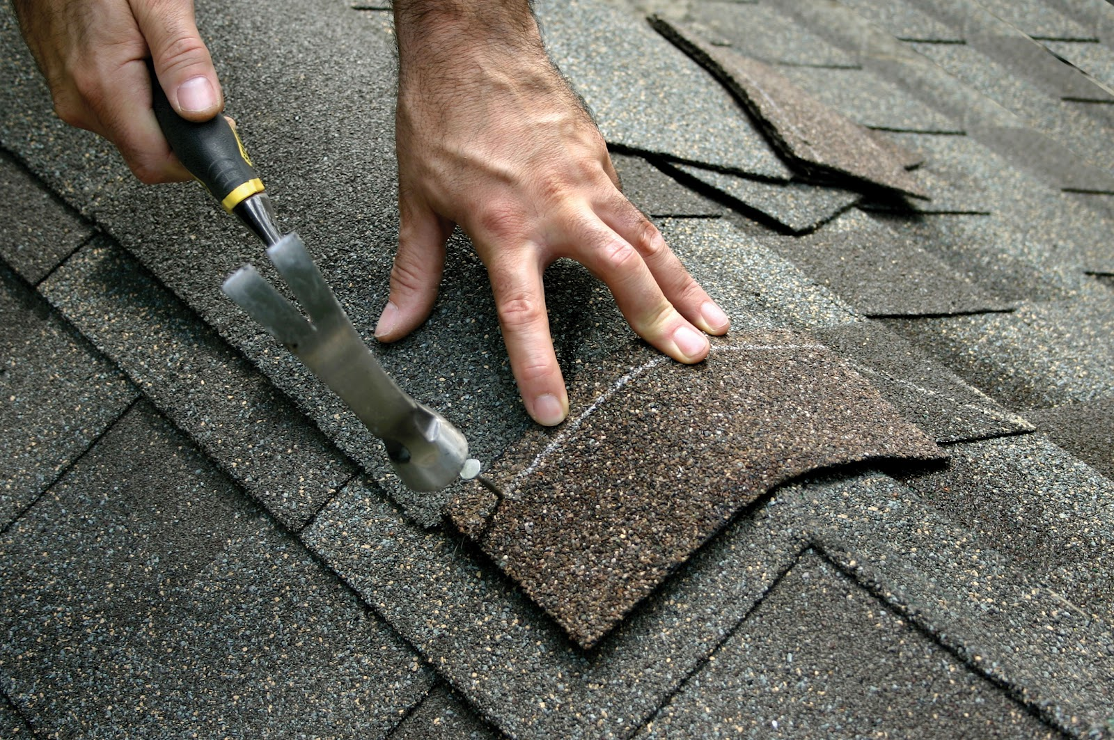 Shingle Roof Repair and Maintenance